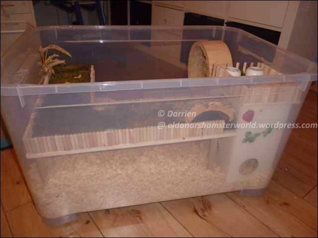 Bin cages eldanar 39 s hamsterworld for How to build a hamster cage